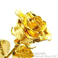 gold dipped roses 24k gold roses by the forever the original gold
