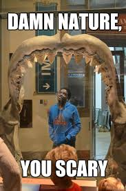 Damn Nature You Scary Meme - damn nature you scary black guy in museum quickmeme