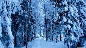 snow wallpaper 3840x2160 47296