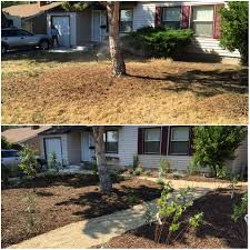 xeriscape nevada drought prevention big time part 3 full circle