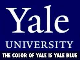 Yale Flag Yale University By Karan Tate