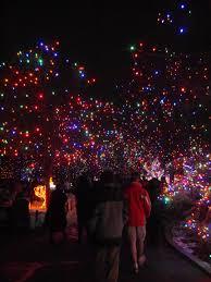 denver zoo lights hours denver zoo lights 2015 just lauren
