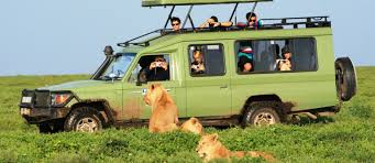 land rover safari roof faq journey into africa