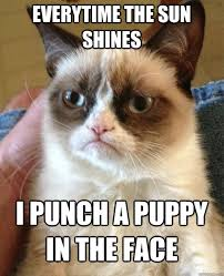 Puppy Face Meme - everytime the sun shines i punch a puppy in the face grumpy cat