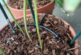 home garden watering system vidpedia net vidpedia net