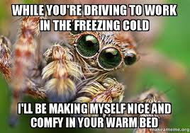 Freezing Cold Meme - while you re driving to work in the freezing cold i ll be making