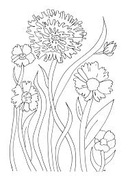 Simples Fleurs Un Coloriage Assez Facile Dans La Galerie  Fleurs