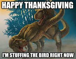 Funny Thanksgiving Meme - happy thanksgiving i m stuffing the bird right now horny