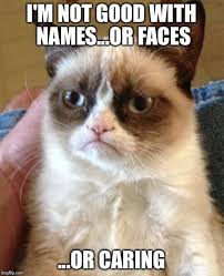 Meme Names And Faces - grumpy cat meme imgflip