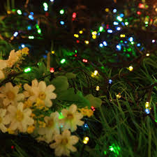 Patio Christmas Lights by Product