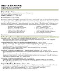 resume exles for government resume sles types of resume formats exles templates