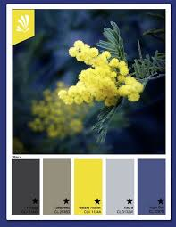15 best salon color ideas images on pinterest blue yellow grey