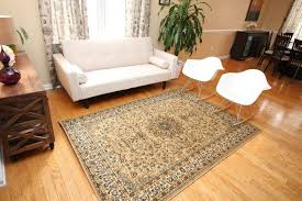 Area Rugs For Less Living Room Rugs For Less Living Room Chic Living Room Decor Cheap