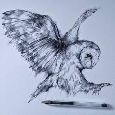 the 25 best owl drawings ideas on pinterest owl sketch animal