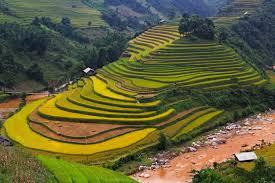 planifiez votre voyage au vietnam en seul clin d u0027oeil