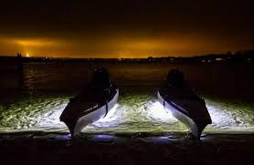 kayak lights for night paddling led underwater lights for paddle boards kayaks canoes a thrifty