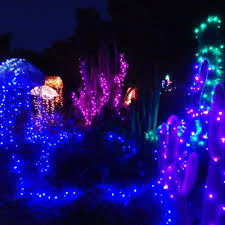festival of lights 2017 presented by mendocino coast botanical