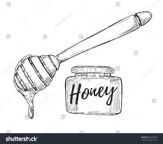 honey jar stick freehand pencil drawing stock vector 590203523