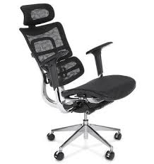 Ergonomic Armchairs Top 10 Mesh Back Ergonomic Chairs With Lumbar Support Plus