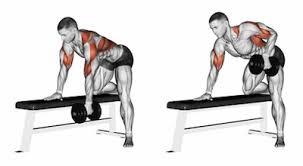 Incline Bench Dumbbell Rows Exercise Database Back U2014 Jase Stuart Mens Health Mentor