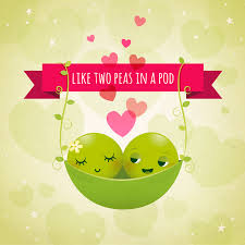 2 peas in a pod irene gough illustration two peas a pod of