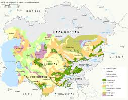 Aral Sea Map Infographic