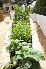 690 best kitchen gardens images on pinterest gardening