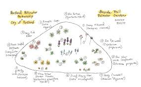 Butterfly Garden Layout by Neighbors Ban Together For Pollinators The West End News