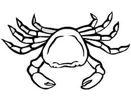 Free Printable Crab Coloring Pages For Kids Crab Coloring Page