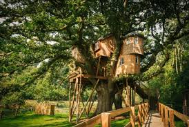 21 most wonderful treehouse design ideas for and kids