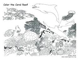 thanksgiving reefs color pages for kids in addition to summer coloring pages coloring