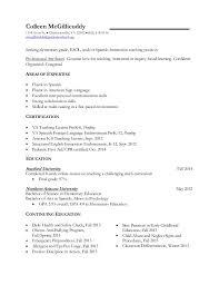 resume teacher examples elementary teacher chalkboard resume