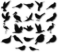 birds silhouettes birds clipart birds svg bird silhouette clip
