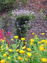 victorian garden walls helmsley walled garden