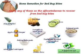 remedies for bed bug bites home remedies for bed bug bites noble home remedies