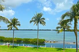 homes for sale palm coast fl land and real estate listings