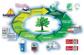VII Le développement durable