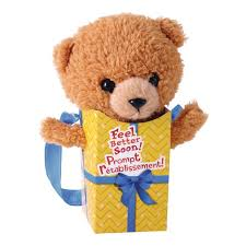 feel better bears 28 best message bears images on teddy bears and