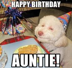 Happy Birthday Dog Meme - funny happy birthday meme images for aunt auntie birthday hd images