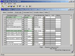 synoptic worksheet dictionary interface the template for entering