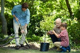 family gardening 3 generations morsa images