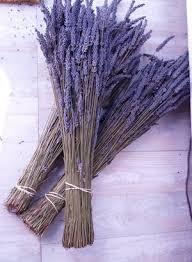 fat lavender bundles beautiful color