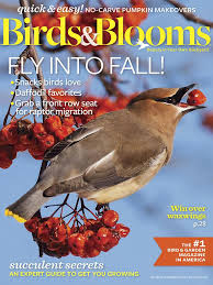 Backyard Birding Magazine Birds U0026 Blooms Magazine Oct Nov 2016 Edition Texture