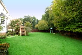 exterior backyard play area with grass and wood chips backyard