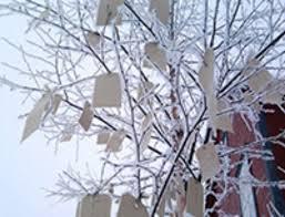 Wish Tree Yoko Ono Wish Tree Hirshhorn Washington Dc Usa U2013 Imagine Peace