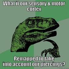Neuroscience Meme - neuroscience meme quickmeme