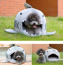 amazon com kojima shark round house puppy bed with pet bed mat