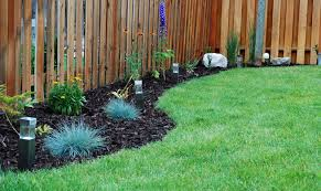 Tree Ideas For Backyard Front Yard Flower Beds For Our Big Tree In The Backyard