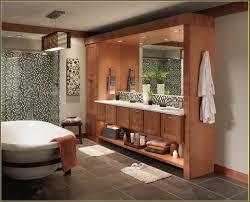 Modern Bathroom Furniture Furniture Stunning Merillat Cabinets For Smart Kitchen Or