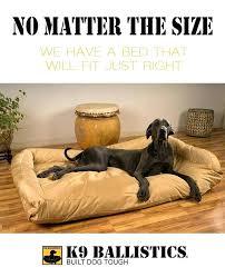 big dog beds u2013 startupselfie co